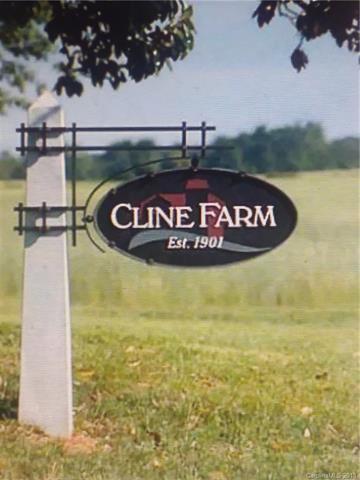 #90 Cline Farm Road #90, Lincolnton, NC 28092 (#3456294) :: Zanthia Hastings Team