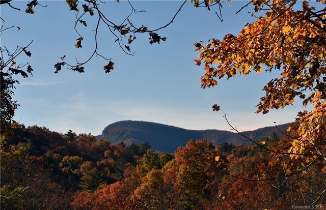 102 Gray Bank Road #0, Lake Toxaway, NC 28747 (#3456302) :: Exit Mountain Realty