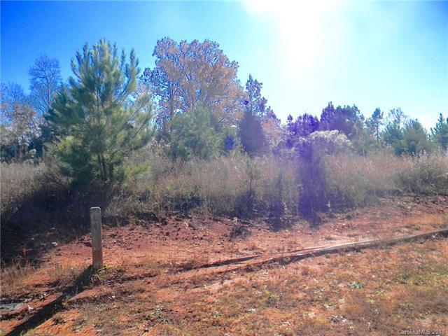7450 Barrington Ridge Drive #28, Indian Land, SC 29707 (#3456372) :: Rinehart Realty