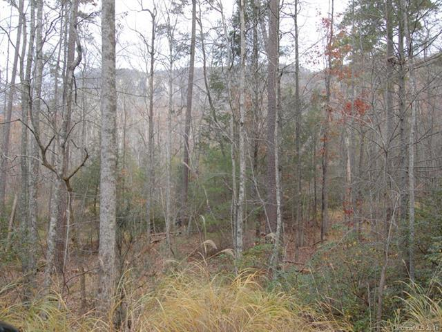 LOT 114 Bald Hill Court, Lake Lure, NC 28746 (#3456376) :: DK Professionals Realty Lake Lure Inc.