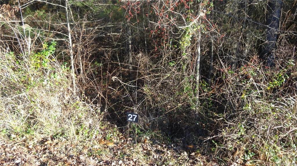 146 Peddlers Trail - Photo 1