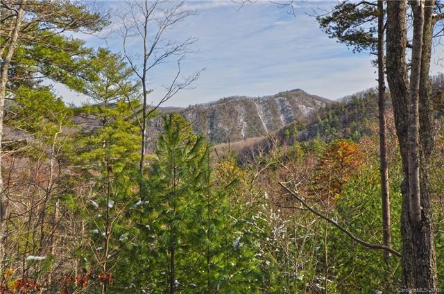 138 High Mountain Road, Hot Springs, NC 28743 (#3456890) :: DK Professionals Realty Lake Lure Inc.