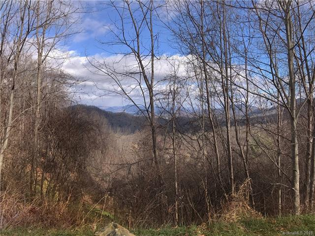 0 Acres View Drive, Waynesville, NC 28786 (#3457061) :: Exit Mountain Realty