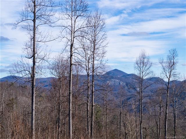 846 Silverglen Way #73, Hendersonville, NC 28792 (#3457132) :: Homes Charlotte