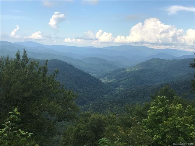 47 Overlook Drive #47, Mars Hill, NC 28754 (#3457357) :: Carlyle Properties