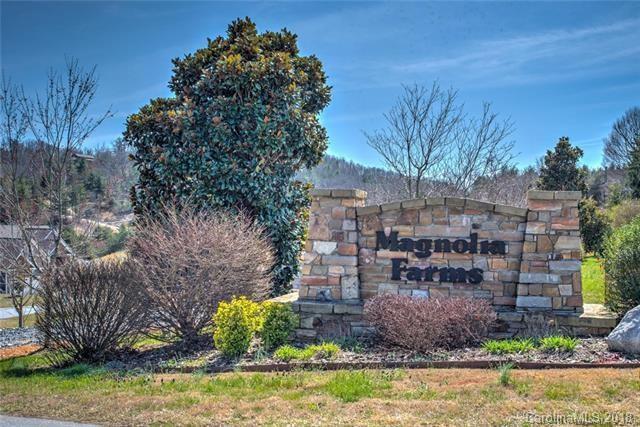 57 Magnolia Farms Drive #11, Asheville, NC 28806 (#3457410) :: Rinehart Realty