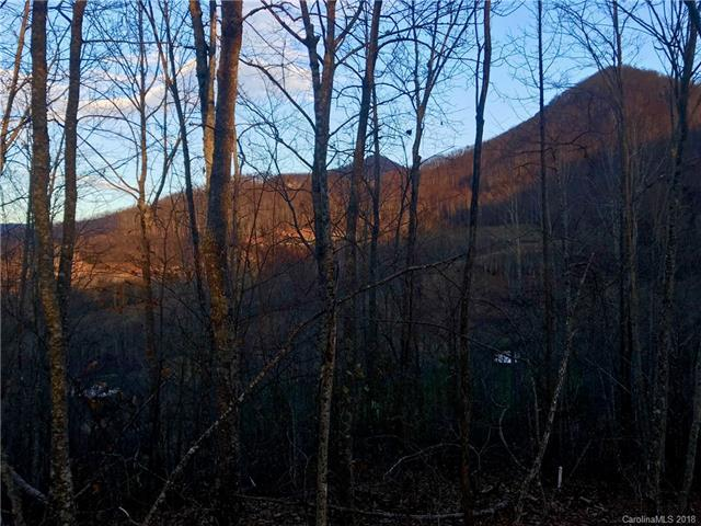 0054 High Line Road #54, Sylva, NC 28779 (#3457442) :: Mossy Oak Properties Land and Luxury