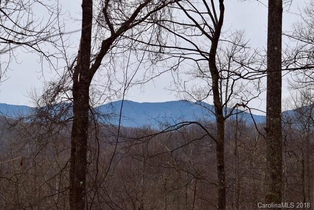 Lot 67 Rainbow Trout Drive #67, Spruce Pine, NC 28777 (#3457938) :: Rinehart Realty