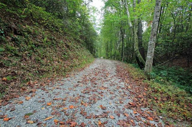 12 Double Knob Road #12, Brevard, NC 28712 (#3458349) :: Exit Mountain Realty