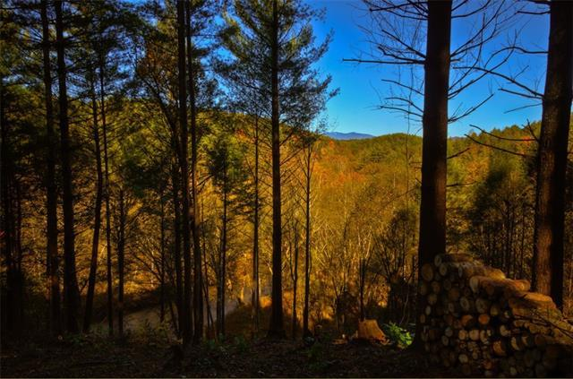 Lot 377 Table View Lane, Lenoir, NC 28645 (#3458611) :: Exit Mountain Realty