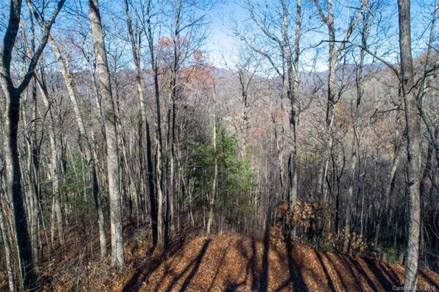 Lot #89 Woodbridge Drive, Tuckasegee, NC 28783 (#3459000) :: Keller Williams South Park