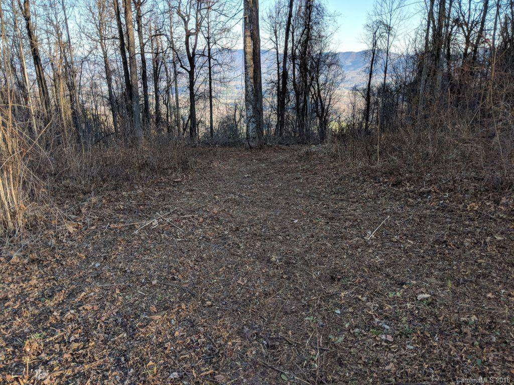 T-24 2523 Creston Drive T-24, Black Mountain, NC 28711 (#3459056) :: Puffer Properties