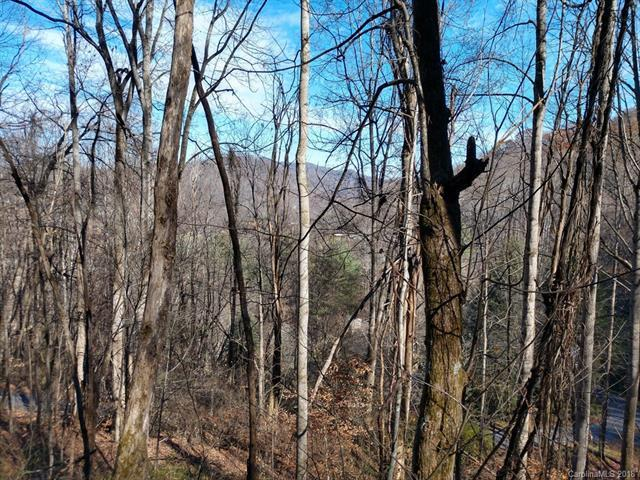 48 Spirit Mountain Trail, Waynesville, NC 28786 (#3459217) :: Francis Real Estate