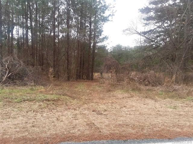 999 Polk County Line Road, Rutherfordton, NC 28139 (#3459340) :: Caulder Realty and Land Co.