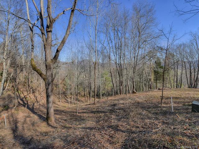 Lot 29 Falling Glen Drive, Waynesville, NC 28785 (#3459448) :: Puffer Properties
