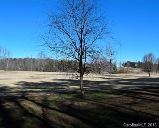LOT 19 20 E Oakwood Drive 19 20, Nebo, NC 28761 (#3459625) :: Zanthia Hastings Team