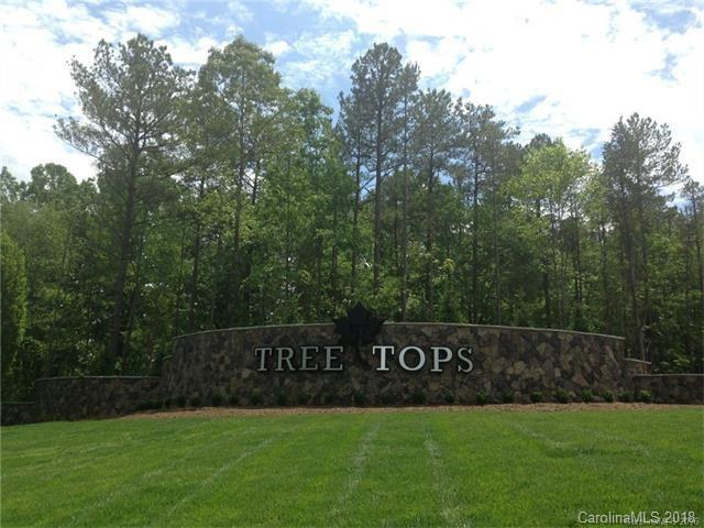 1606 Tranquility Boulevard #761, Lancaster, SC 29720 (#3459695) :: Carlyle Properties
