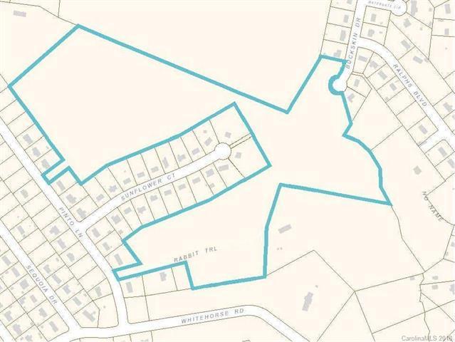 408 Buckskin Drive, Gastonia, NC 28052 (#3459881) :: LePage Johnson Realty Group, LLC
