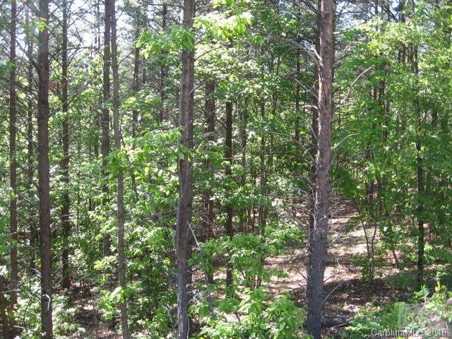 9023 Horizon Trail #72, Nebo, NC 28761 (#3461056) :: Exit Mountain Realty