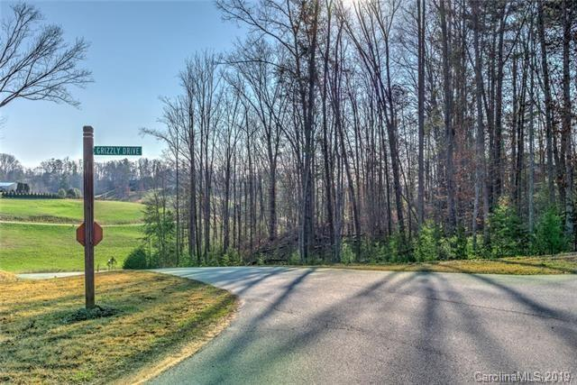 18 Grizzly Drive #67, Leicester, NC 28748 (#3462097) :: Homes Charlotte