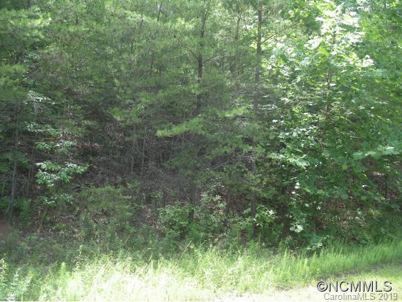 Lot 19 South Pointe Road, Mill Spring, NC 28756 (#3462148) :: Exit Mountain Realty