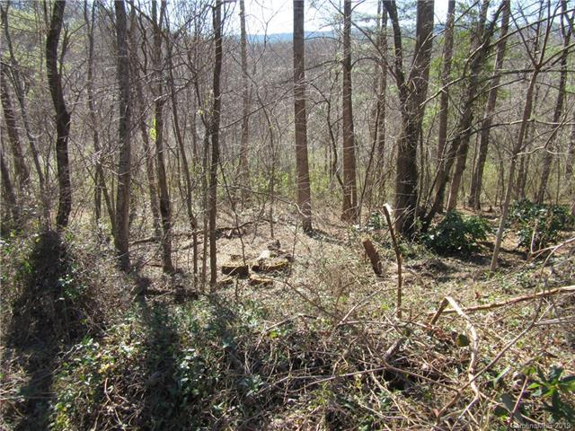0 Plantation Drive #23, Hendersonville, NC 28792 (#3462352) :: The Ramsey Group