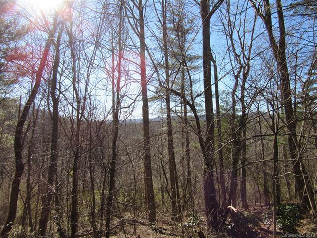 0 Plantation Drive #25, Hendersonville, NC 28792 (#3462379) :: The Ramsey Group