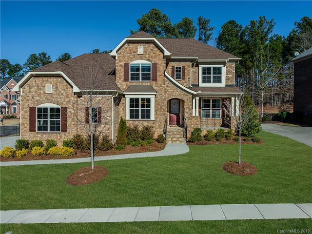 16628 Doves Canyon Lane, Charlotte, NC 28278 (#3462448) :: Exit Mountain Realty