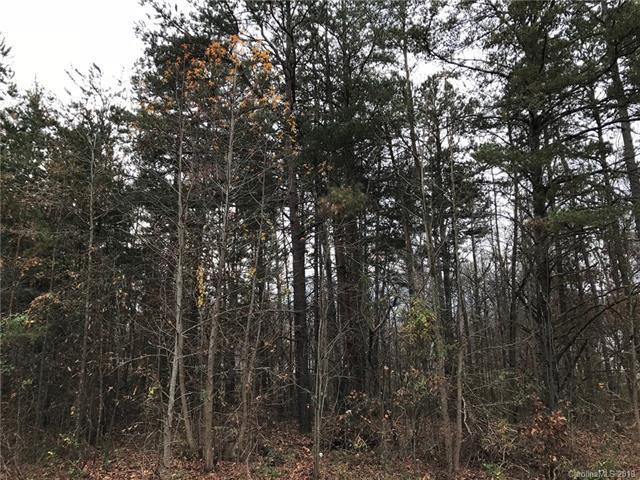 225 Branchwood Circle, Kings Mountain, NC 28086 (#3462595) :: Exit Mountain Realty
