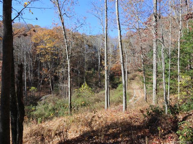 00 Erwin Lane, Waynesville, NC 28785 (#3462833) :: Exit Mountain Realty
