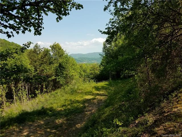 34 Rimesdale Way #34, Waynesville, NC 28786 (#3463057) :: Puffer Properties