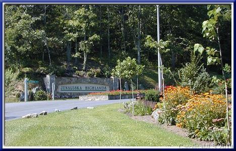 53 Montrose Lane, Waynesville, NC 28785 (#3463294) :: Rinehart Realty