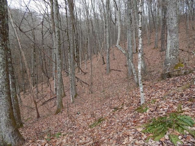 00 Louise Lane, Waynesville, NC 28786 (#3463335) :: Mossy Oak Properties Land and Luxury
