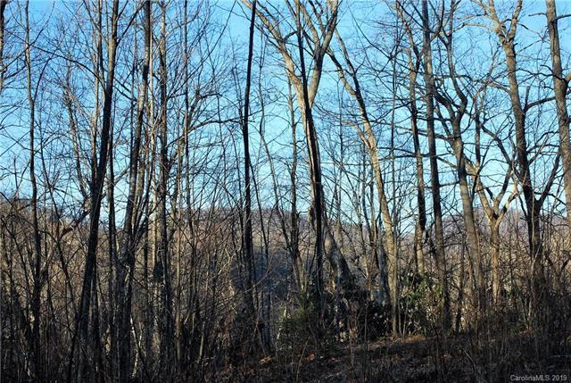 999999 Garren Creek Road, Fairview, NC 28730 (#3463438) :: Puffer Properties