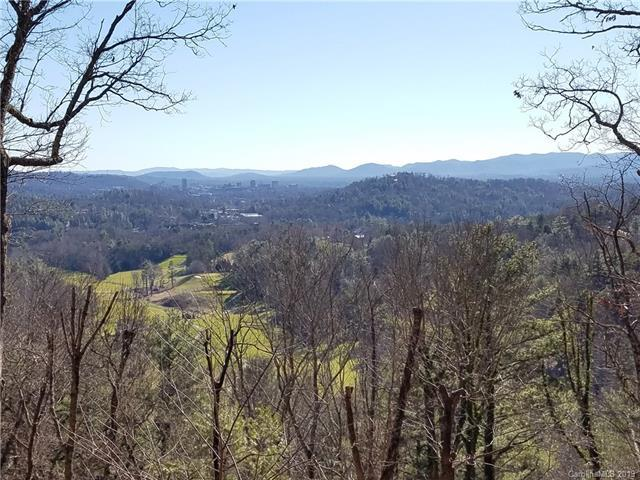100 Robinhood Road #45, Asheville, NC 28804 (#3463579) :: Exit Mountain Realty