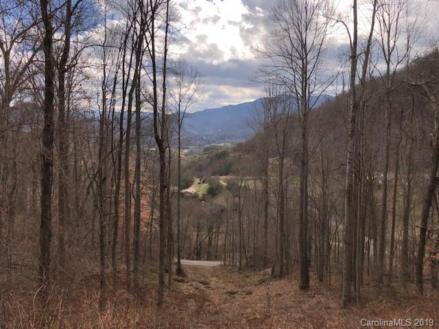 39 Spring Valley Trail #39, Waynesville, NC 28786 (#3463672) :: LePage Johnson Realty Group, LLC