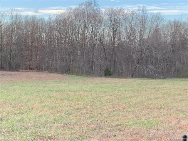 6100 County Line Road, Mount Pleasant, NC 28124 (#3463777) :: Team Honeycutt