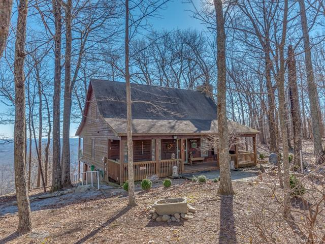 2036 Miller Mountain Road, Saluda, NC 28773 (#3464070) :: Puffer Properties