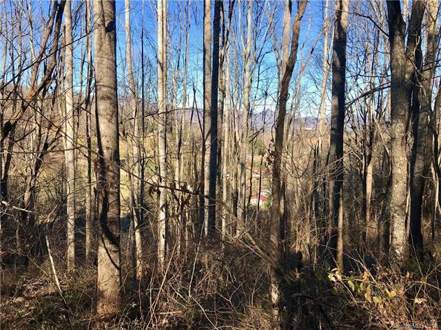 0 Valley Overlook Drive, Waynesville, NC 28786 (#3464335) :: Puffer Properties