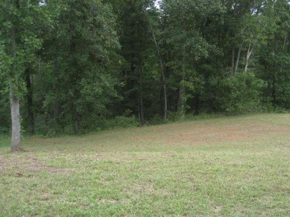 3581 Blankenship Drive, Morganton, NC 28655 (#3464905) :: Mossy Oak Properties Land and Luxury