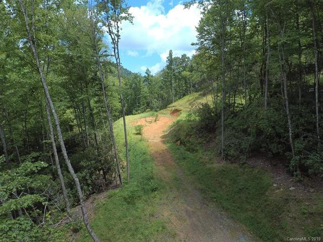 000 Tilley Creek Road, Cullowhee, NC 28723 (#3465109) :: LePage Johnson Realty Group, LLC