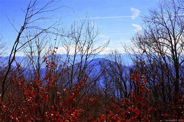 224 Birch Springs Lane 224, 230, 231, Mars Hill, NC 28754 (#3465210) :: Carlyle Properties