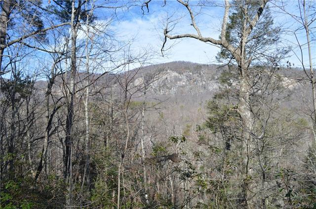 0 Mintwood Court E #20, Lake Lure, NC 28746 (#3465366) :: Cloninger Properties
