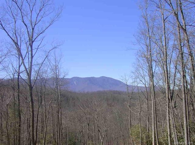 Lot 84 Rainbow Trout Drive #84, Spruce Pine, NC 28777 (#3465475) :: Roby Realty