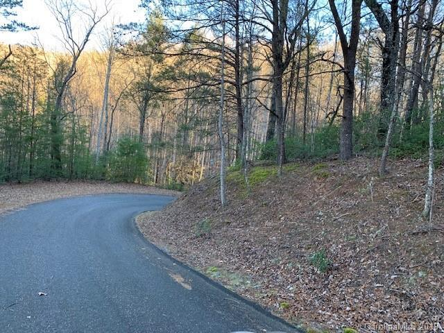 0000 Roundabout Road, Lake Lure, NC 28746 (#3465531) :: Caulder Realty and Land Co.