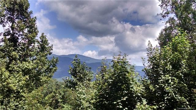235 Flying Dutchman Road #226, Sylva, NC 28779 (#3465588) :: Mossy Oak Properties Land and Luxury