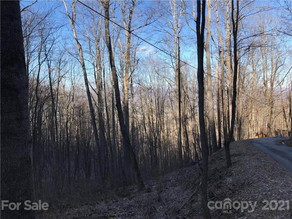 309 Old Country Road Lot #309, Waynesville, NC 28786 (#3465869) :: Caulder Realty and Land Co.