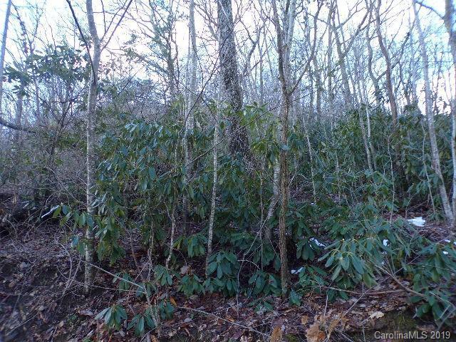 0 Fair Hollow Lane, Hendersonville, NC 28792 (#3466161) :: Bluaxis Realty