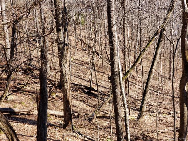 Lot 21 Prosperity Ridge, Waynesville, NC 28785 (#3466619) :: Puma & Associates Realty Inc.