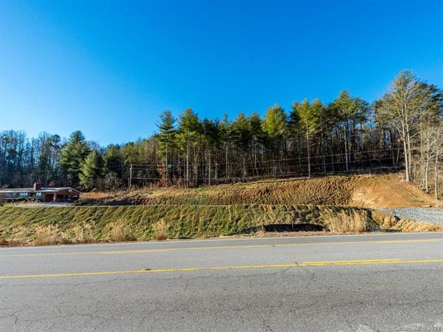 9999 Carl Eller Road, Mars Hill, NC 28754 (#3466985) :: Puffer Properties